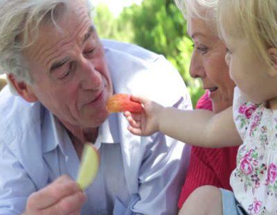 Grandparent's Picnic
