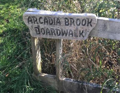 Hike Tkipok Trail in Arcadia