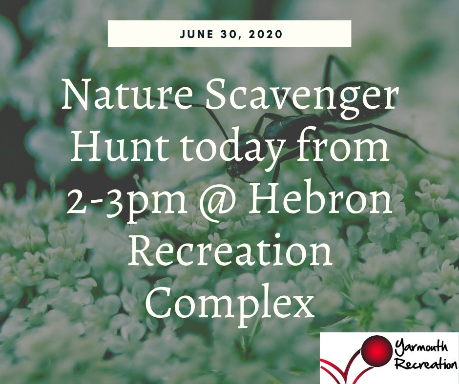 No registration needed, just come on by and join us for some time outside in nature! No cost, open to all ages. We will be asking people to please respect Covid19 distancing, and taking sanitizer breaks during the program. Please bring your own water and sun screen if needed.