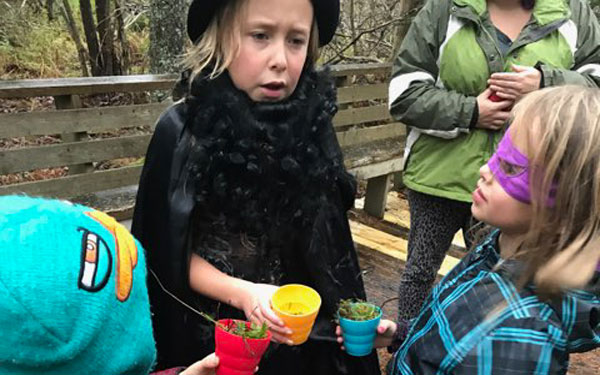 Want to develop your super senses? Name all the smells in the forest!